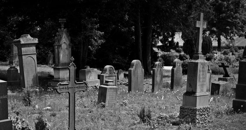 Dewastacja cmentarza w Olsztynie